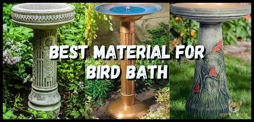 Best Bird Baths attracting birds What is the best material for bird bath