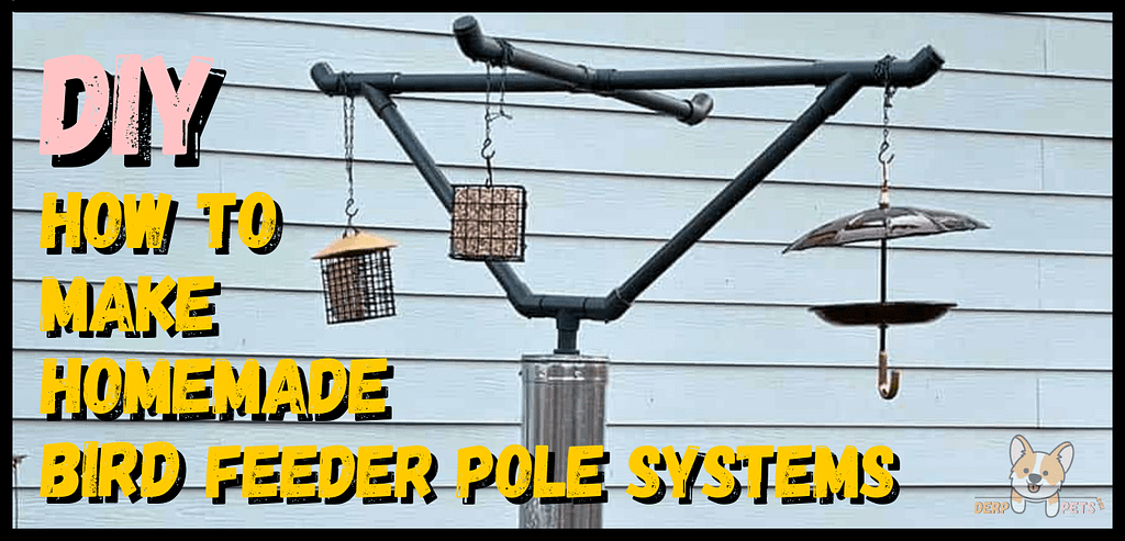 How to make homemade bird feeder pole systems - Best pole mounted bird feeders squirrel proof