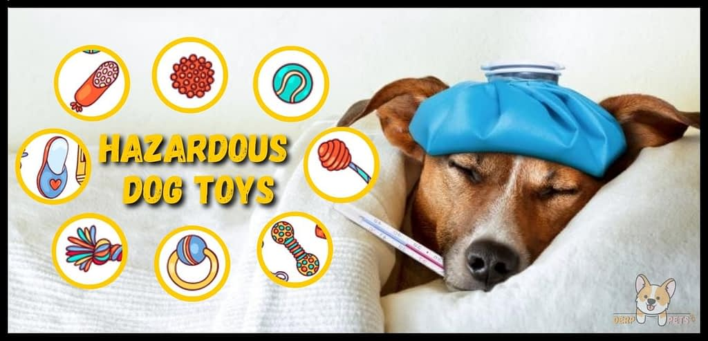 Best toys to keep dog busy while at work hazardous dog toy
