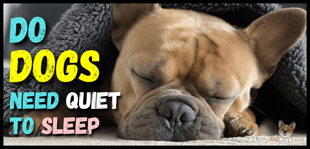 Do Dogs Need Quiet To Sleep