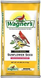 Best food for Wild Birds .