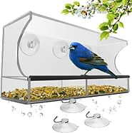 Window Bird Feeder with Strong Suction Cups and Seed Tray
