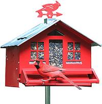 Perky-Pet 338 Squirrel-Be-Gone Bird Feeder