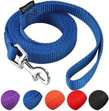 AMAGOOD Strong and Durable Traditional Style Puppy Leash