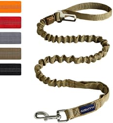 AUROTH Heavy Duty Bungee Best Leash for German Shepherd that pulls with 2 Padded Handles