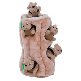 3-Outward Hound Hide-A-Squirrel Squeaky Puzzle Plush Dog Toy 6-Our Pets IQ Treat Ball & IQ Treat Activity Dog Tug Toy