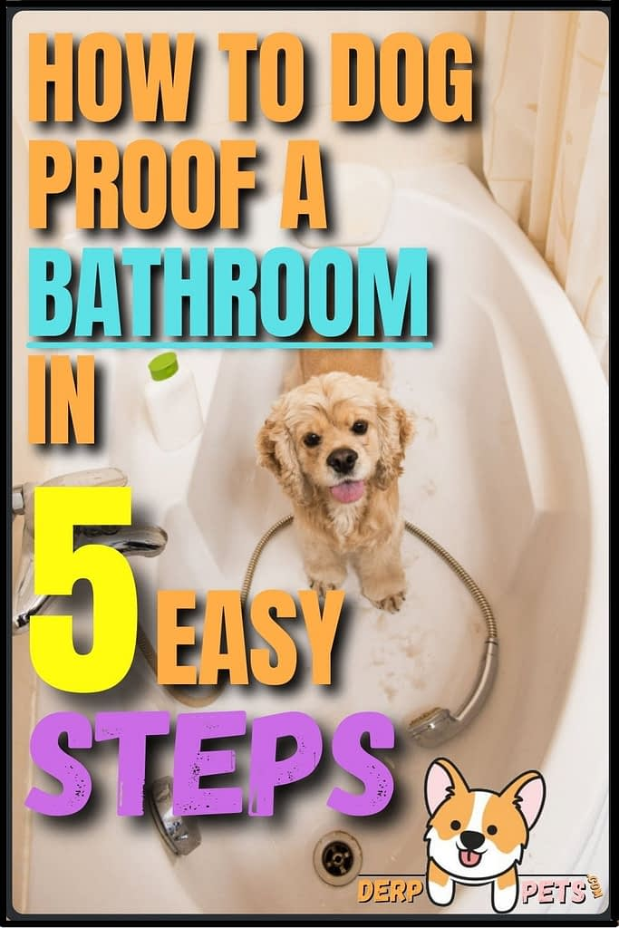 How to dog-proof a room - How to dog-proof a Bathroom, Laundry Room in 5 easy steps